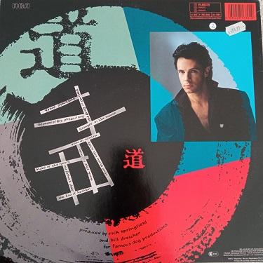 Rick Springfield – Tao Lp 33t Vinyle